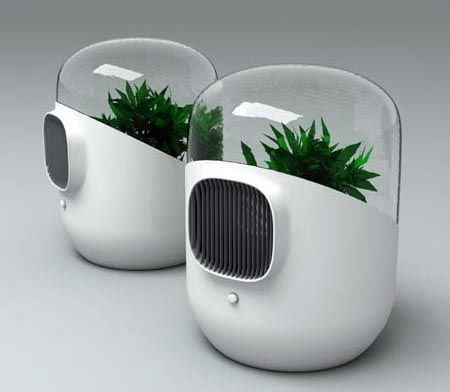 Natural air purifier